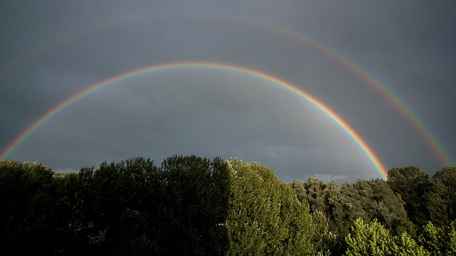 It's a double rainbow all the way! What does it mean!