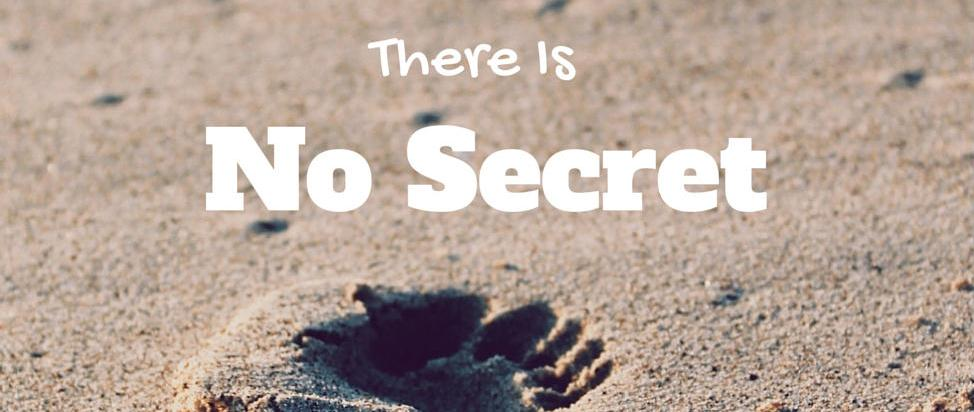 There Is No Secret – Thumbnail
