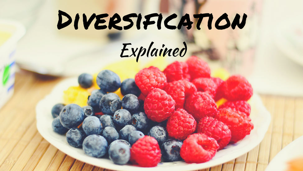 Diversification Explained